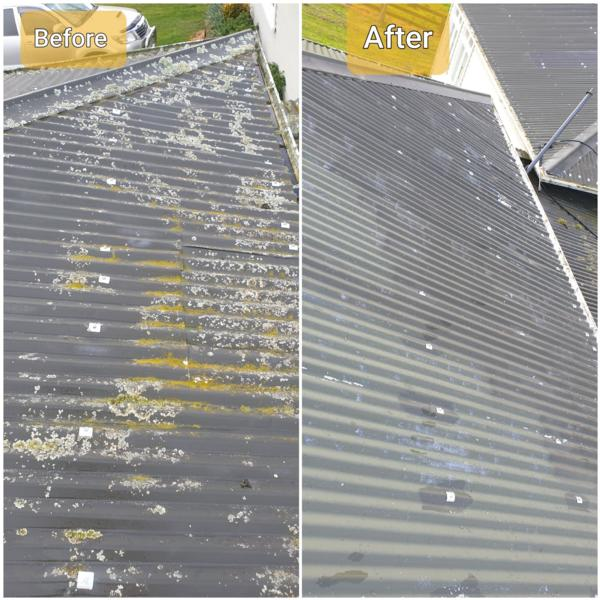 The dangers of letting the mould grow on your roof with Rotorua's leading business and house washing service, Exterior Washing Services.
