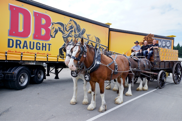 old fashioned beer delivery marks milestone for db draught