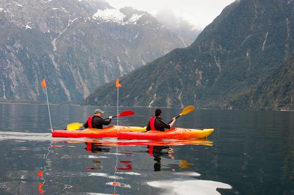 A gentle kayak trip in Milford Sound with Southern Discoveries