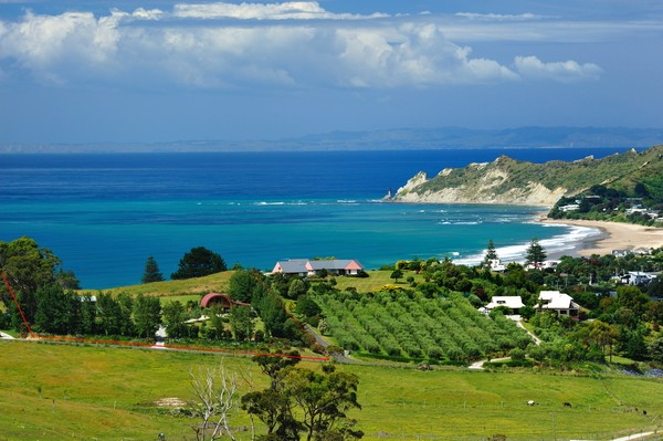 Image result for Gisborne NZ