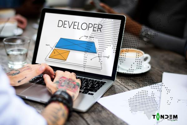 Web Development Christchurch