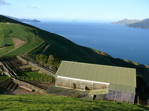 Anaru farm in the Marlborough Sounds – one of New Zealand's oldest continually owned properties – is on the market for sale.