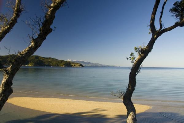 One of the picturesque beaches that can be enjoyed at Earthsong Lodge on Great Barrier Island